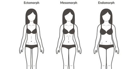 The 3 Body Types, Explained | Bicycling