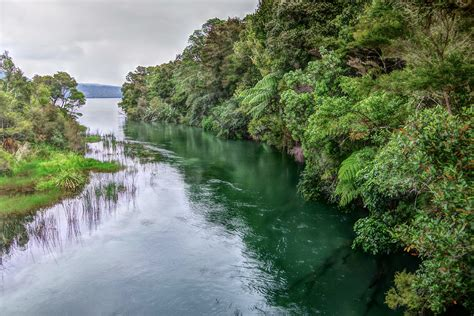 Six ways to improve water quality in New Zealand's lakes