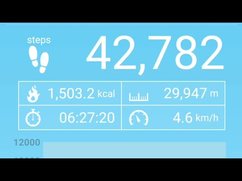 10 Best Step Counter or Pedometer Apps for Android to
