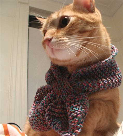Cat Scarf?   Here we see Ira modeling a 100% cotton baby